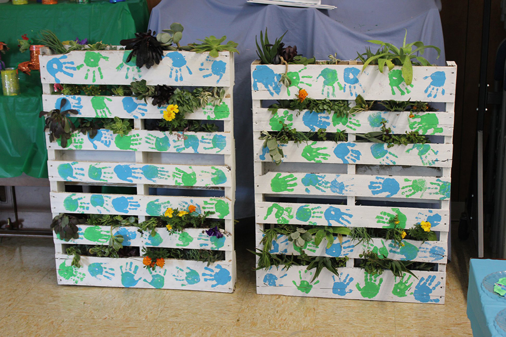 colorful racks with plants at a Preschool & Daycare Serving El Cajon, Lakeside and Santee CA